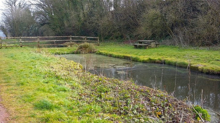 Image 2 Lowdswell canal end